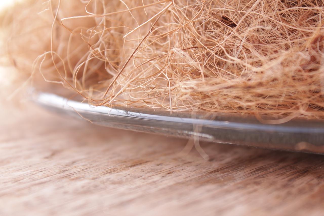 vaso-prato-vidro-5