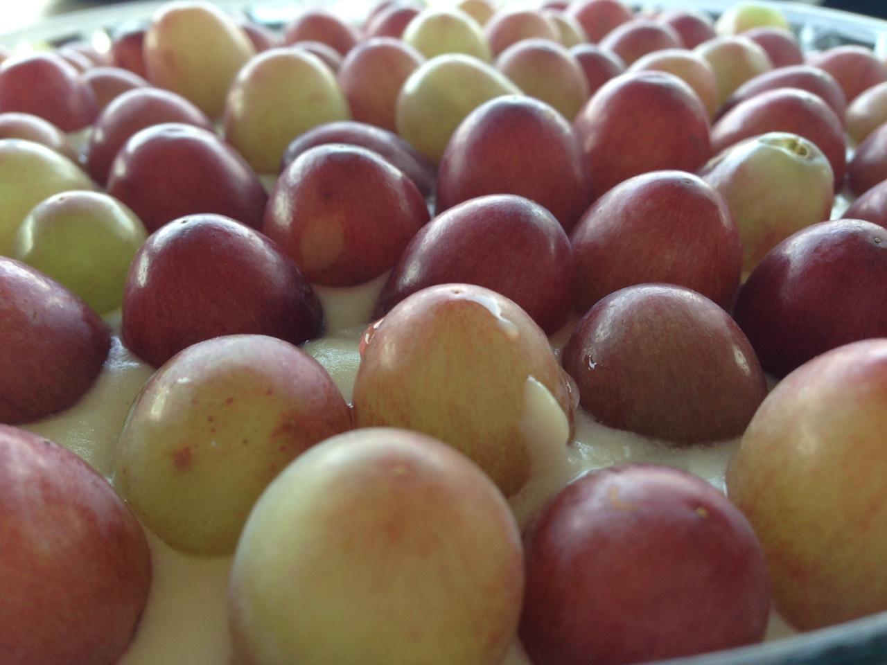 Torta-de-uvas3